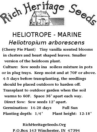 Plain Seed Packet Rich Heritage Seeds